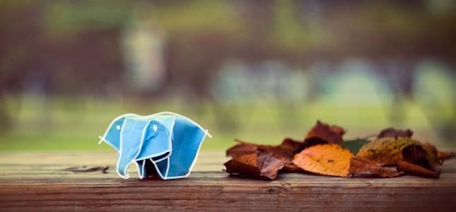 origami-elefante-dibujo
